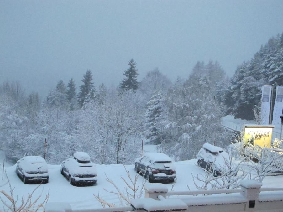 Fifth day dawned with a lot of fresh snow: time to visit the mountains!